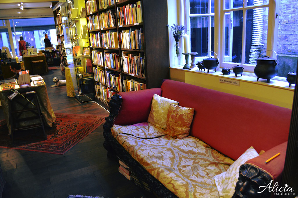 Browser's sofa and dog at Treadwell's, London