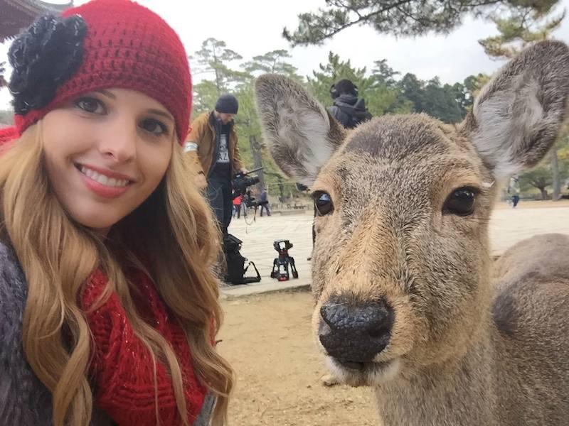 Deer Nara Park Pose